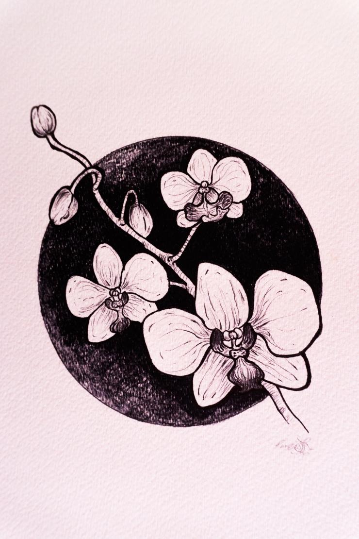 OrchidInk