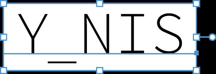 Y_NIS-Logo